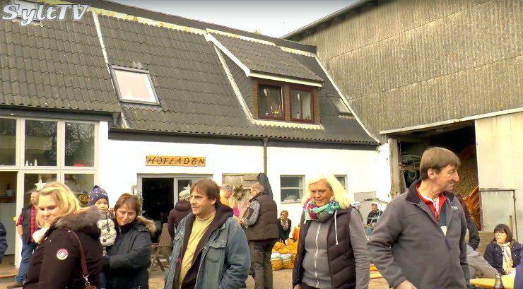Auf dem Hoffmann Bauernhof in Morsum/Sylt