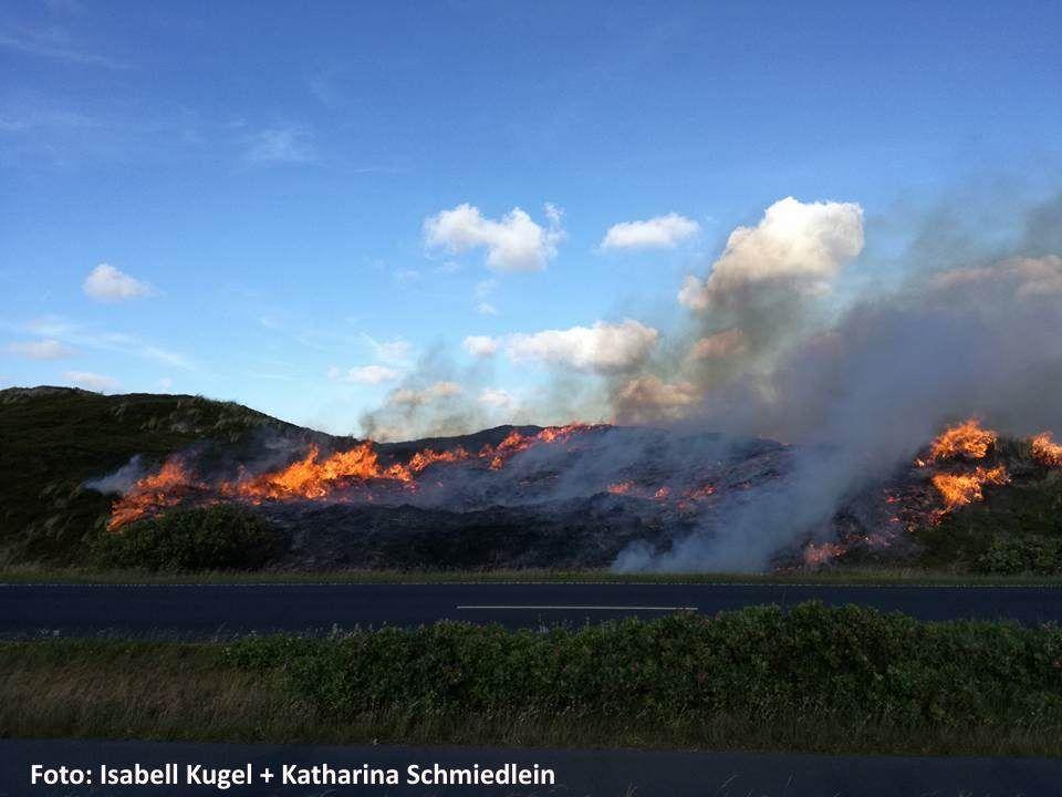 Das Feuer breitete sich durch die trockene Natur sehr schnell aus