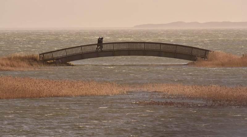 Als Rettung vor dem Hochwasser am Wattenmeer