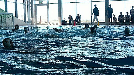 Sylter Wasserballer sind Meister