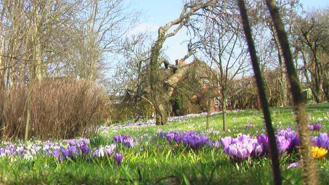 Frühling auf Sylt