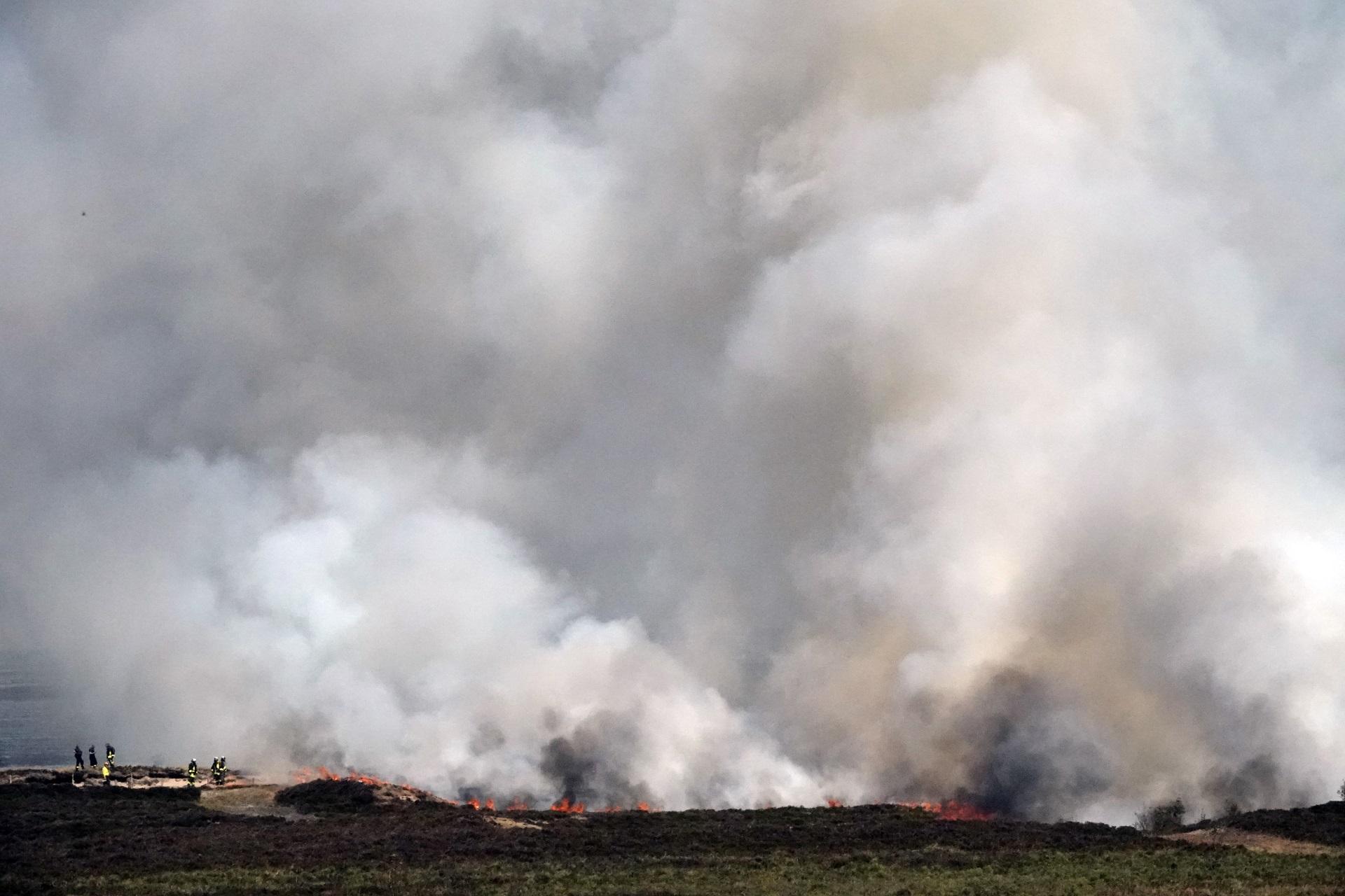 Naturschutzaktion endete mit Großbrand am Morsum Kliff