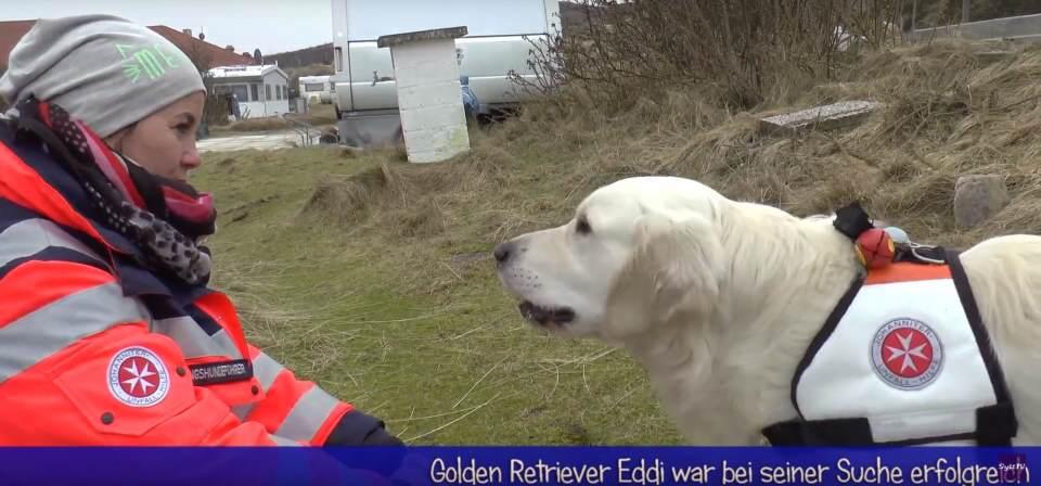 Suchhunde werden auf Sylt ausgebildet