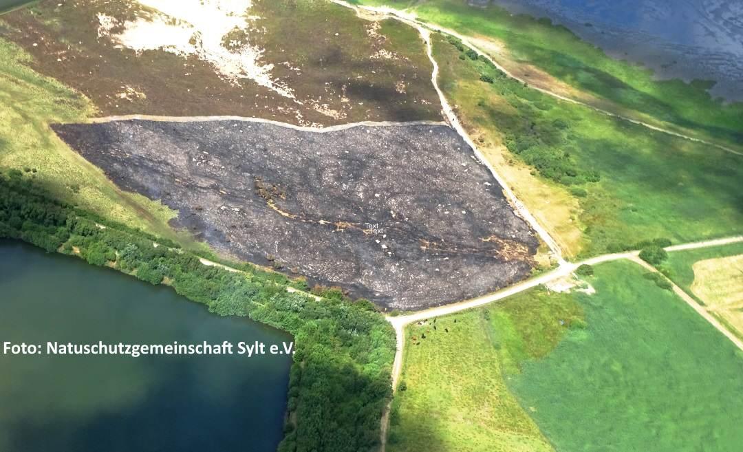 So sieht das Gelände am Tag nach dem Heidebrennen auf Sylt aus