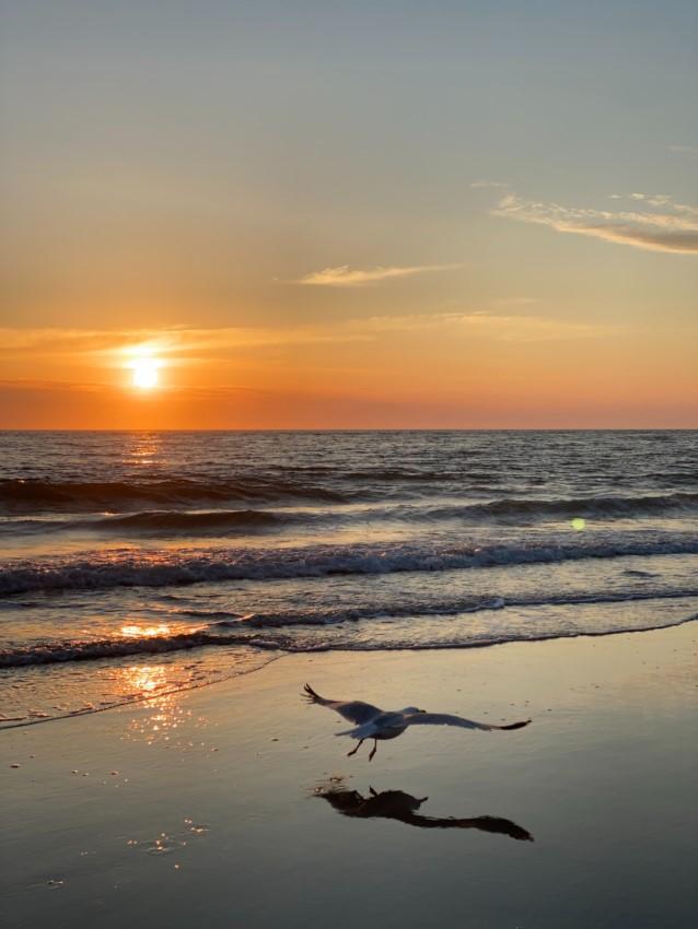 Bevor das Meer lockt, ist Urlaubsvorbereitung angesagt