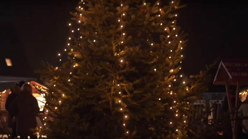 weihnachtsbaum anleuchten in h rnum sylt tv. Black Bedroom Furniture Sets. Home Design Ideas